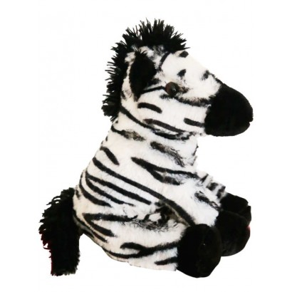 Zebra playful