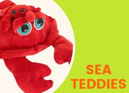 Sea Teddies